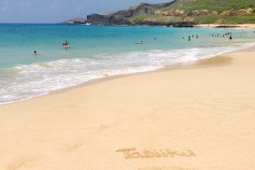 ハワイの海で旅育